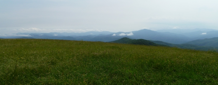 June 2011:  A partial glimpse of the 360-degree view at Max Patch